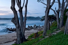 Stewart's Cove Cypress Trees, Carmel