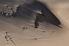 Dunes06